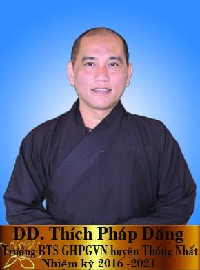 ĐĐ Thích Pháp Đăng trưởng BTS GHPGVN huyện Thống Nhất