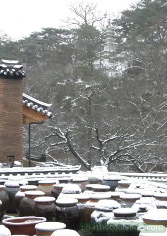Nét đẹp tự viện 'Ngôi chùa Hán trong bão tuyết'
