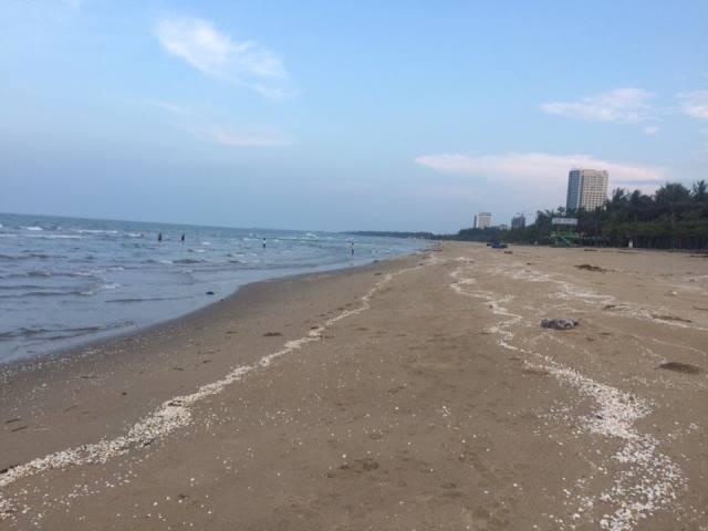 Biển Cửa Lò buồn tênh