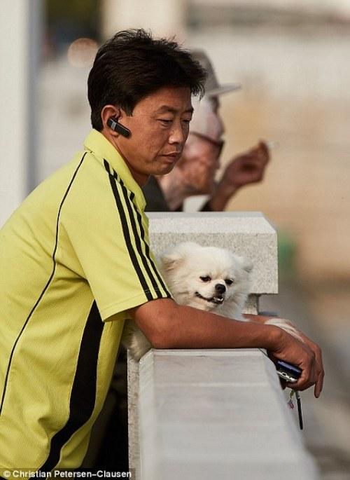 Một người đàn ông Triều Tiên đang nói chuyện điện thoại bên cạnh thú cưng của mình.
