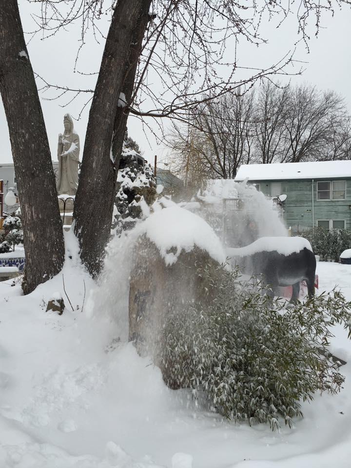 Mỹ: Chùa Lâm Tỳ Ni tuyết phủ trắng khi mùa đông đến