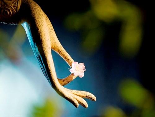 Ý nghĩa của việc tu phước