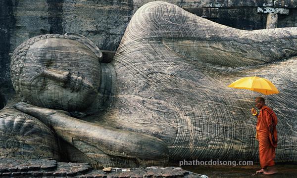 Tội ngủ nghịch là: Làm thân Phật chảy máu, Giết A La Hán, Giết cha, Giết mẹ, Phá hòa hợp Tăng