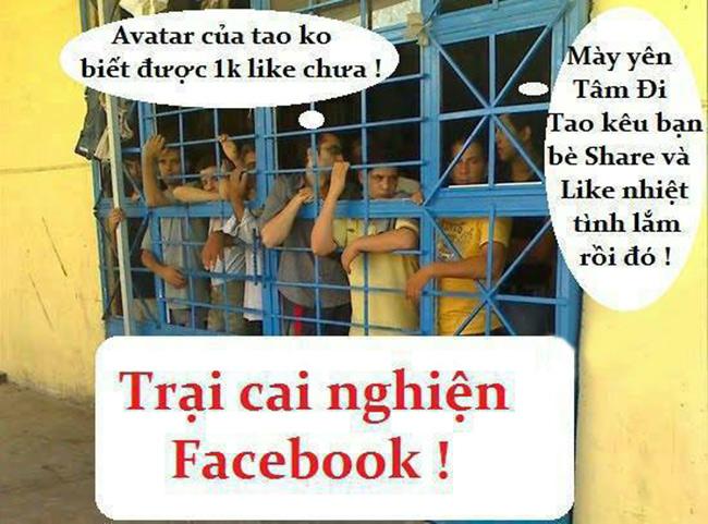 Vấn đề sử dụng facebook của Tăng Ni hiện nay